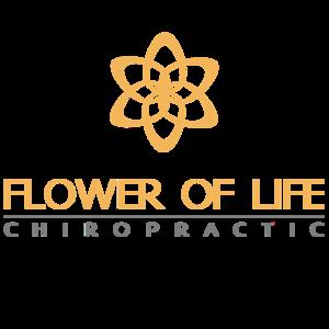 Flower of life sample2.29d7f22490b2b6d7af0fb2095d576602b4007c74